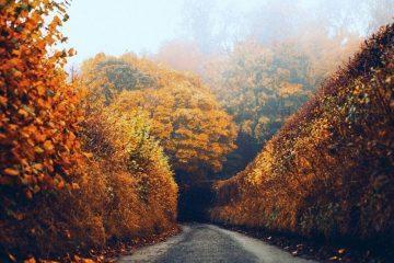 Autumn Travel Bucket List 1