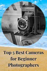 Top 5 Best Cameras for Beginner Photographers